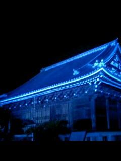 称名寺  ライトアップ
